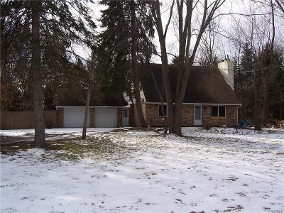Northville Single Family Home For Sale: 40697 Six Mile Rd N