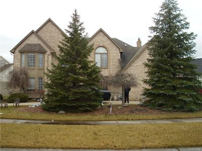 Sterling Heights Single Family Home For Sale: 42311 June Dr