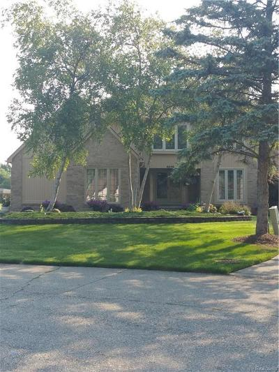 Shelby Twp Single Family Home For Sale: 48115 Lake Valley Dr