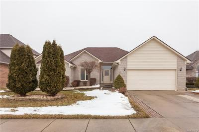 Macomb Single Family Home For Sale: 47434 Anchor Dr