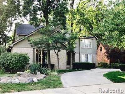 Clinton Township Single Family Home For Sale: 41925 Alden Dr