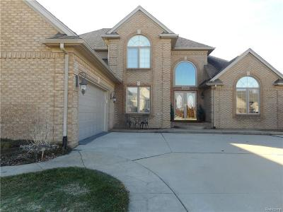 Macomb Single Family Home For Sale: 47089 Woodberry Estates Dr