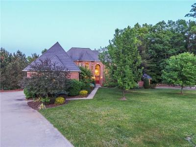 Lake Orion Single Family Home For Sale: 799 Pinery Blvd