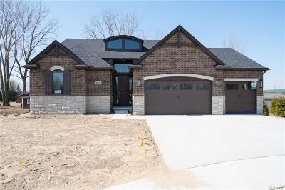 Macomb Twp Single Family Home For Sale: 50131 Anita Way North