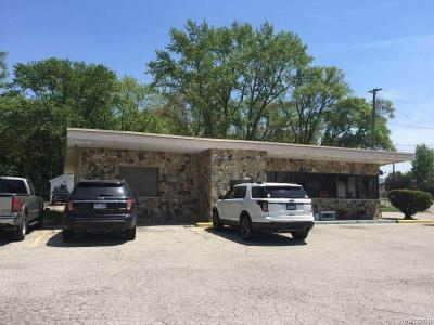 Commercial/Industrial For Sale: 4196 Pointe Tremble Rd