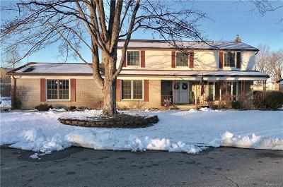 Shelby Twp Single Family Home For Sale: 4161 Snoal Ln