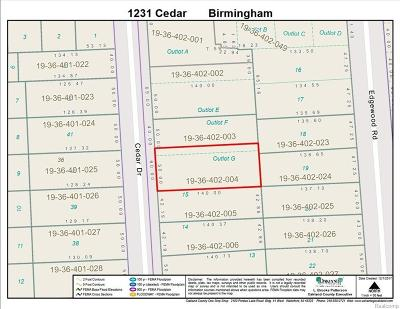 Birmingham Residential Lots & Land For Sale: 1231 Cedar