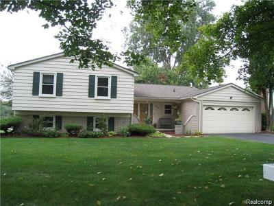 Waterford Single Family Home For Sale: 5009 Shoreline Blvd