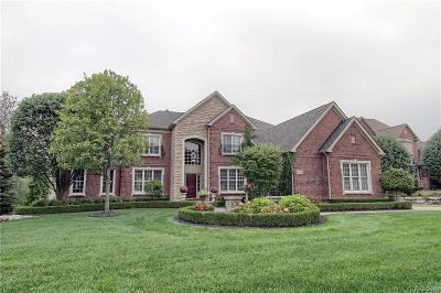 Macomb Single Family Home For Sale: 6425 Adams Dr