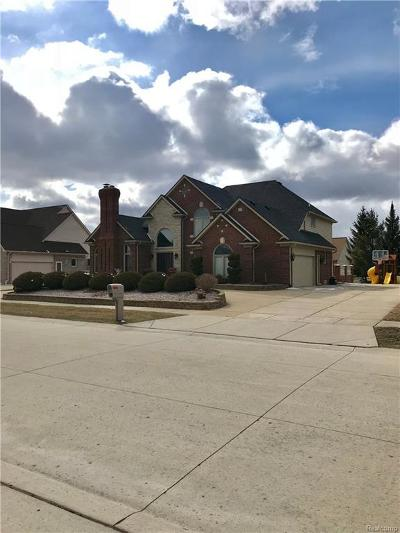 Sterling Heights Single Family Home For Sale: 42855 Shortridge Dr