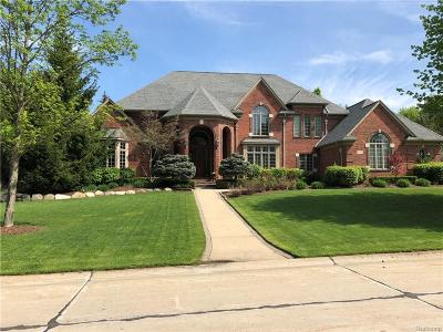 Bloomfield Hills Single Family Home For Sale: 942 Bloomfield Knoll Dr