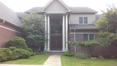 Farmington Hills Single Family Home For Sale: 34705 Berkshire Crt