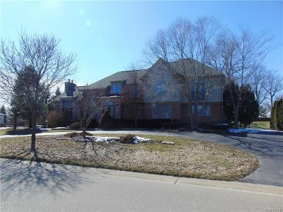 Northville Single Family Home For Sale: 18401 Fox Hollow Crt