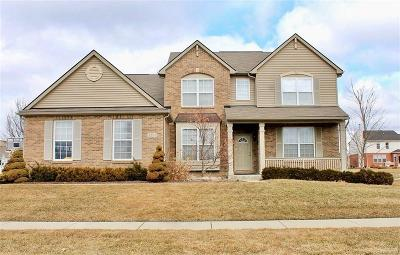 Rochester Hills Single Family Home For Sale: 3511 Hogan Cir
