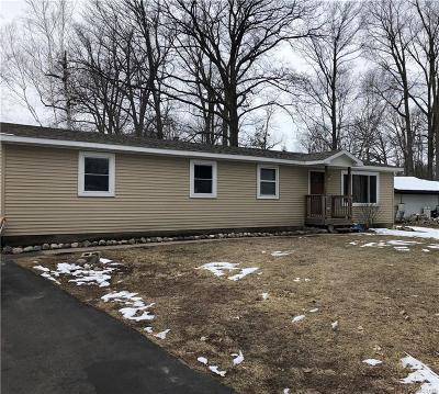 Fort Gratiot Single Family Home For Sale: 3741 Grant Ave
