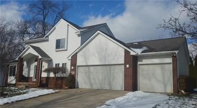 West Bloomfield Single Family Home For Sale: 6692 Grassland Ave