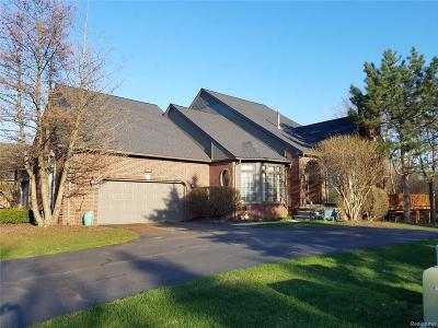 Shelby Twp Condo/Townhouse For Sale: 2028 Barberry Dr