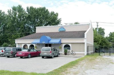 Harrison Twp Commercial/Industrial For Sale: 39539 Jefferson Ave