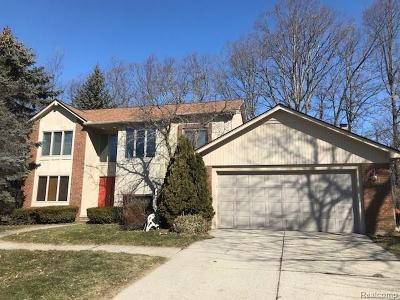 West Bloomfield Single Family Home For Sale: 6362 Odessa Dr