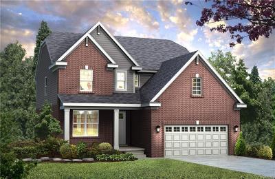 Northville Single Family Home For Sale: 48007 Leland Dr