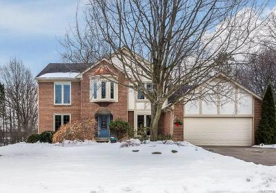 Rochester Hills Single Family Home For Sale: 3365 Rocky Crest Dr