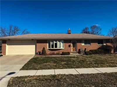 Clinton Township Single Family Home For Sale: 23347 Demley Dr