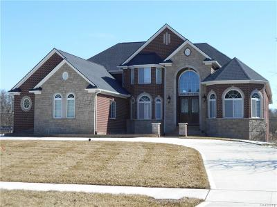 Troy Single Family Home For Sale: 6978 Duchess Crt