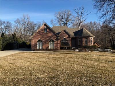 Clinton Township Single Family Home For Sale: 17005 Millar Rd
