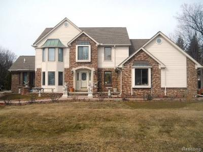 Clinton Township Single Family Home For Sale: 17527 N Nunneley Rd