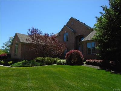 Shelby Twp Single Family Home For Sale: 7396 Sparling Dr