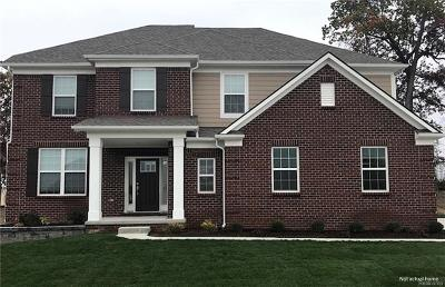 Rochester Hills Single Family Home For Sale: 2169 Logan Dr