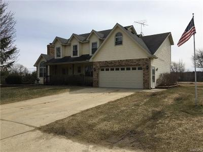Lapeer Single Family Home For Sale: 8200 Hollow Corners Rd