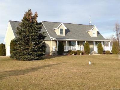 Lapeer Single Family Home For Sale: 3125 Barnes Rd