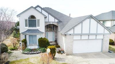 Rochester Single Family Home For Sale: 1024 River Mist Dr
