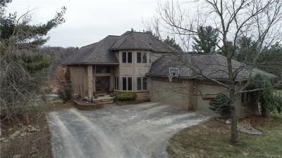 Lapeer Single Family Home For Sale: 4803 Douglas Dr