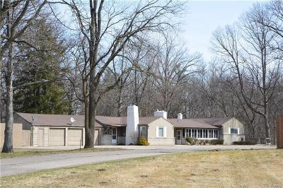 Southfield Single Family Home For Sale: 24200 Lahser Rd