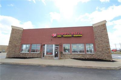 Commercial/Industrial For Sale: 51170 Gratiot Ave