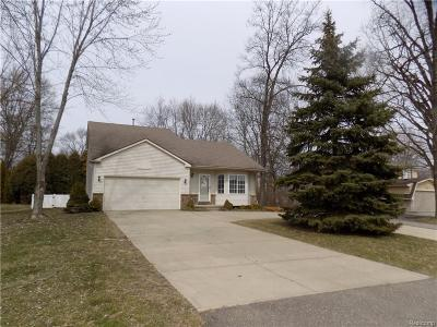 Plymouth Single Family Home For Sale: 44950 Joy Rd