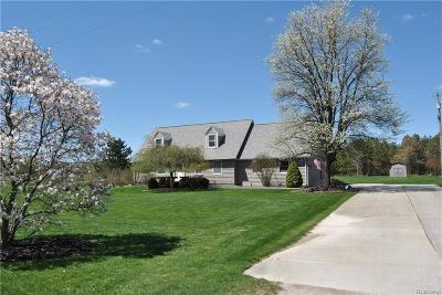 Lapeer Single Family Home For Sale: 3770 Mitchell Rd