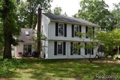 Plymouth Single Family Home For Sale: 41215 Ann Arbor Rd E