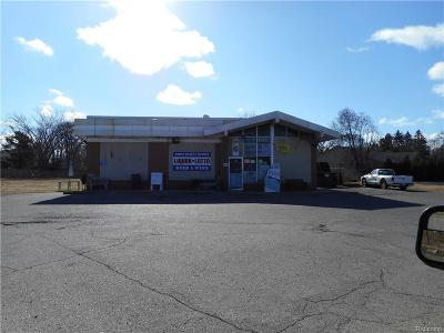 Commercial/Industrial For Sale: 6990 John R Rd