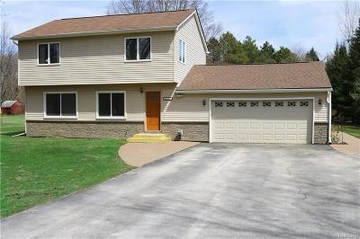 Lake Orion Single Family Home For Sale: 855 Laird St