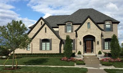 Rochester Hills Single Family Home For Sale: 736 Majestic