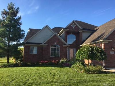 Macomb Single Family Home For Sale: 19408 Springbrook Dr
