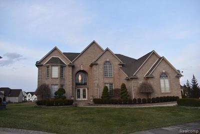 Macomb Single Family Home For Sale: 2411 Joseph Dr