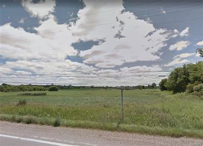 Macomb Residential Lots & Land For Sale: 32 Mile