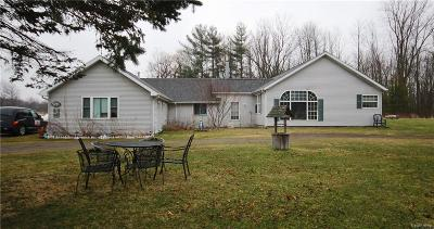 Lapeer Single Family Home For Sale: 5716 Falkenbury Rd