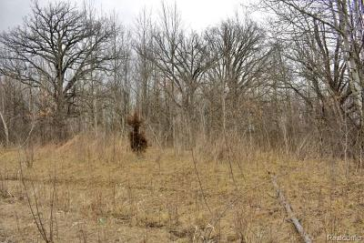 Lapeer Residential Lots & Land For Sale: Homestead Ln