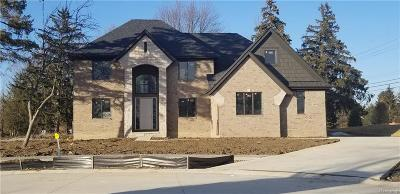 Macomb Single Family Home For Sale: 3973 Lisa Marie