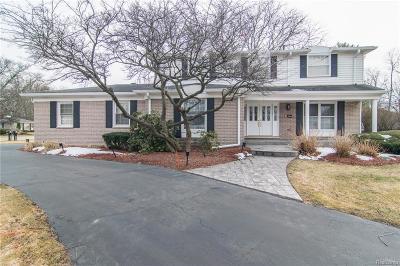 Farmington Hills Single Family Home For Sale: 28809 Still Valley Dr